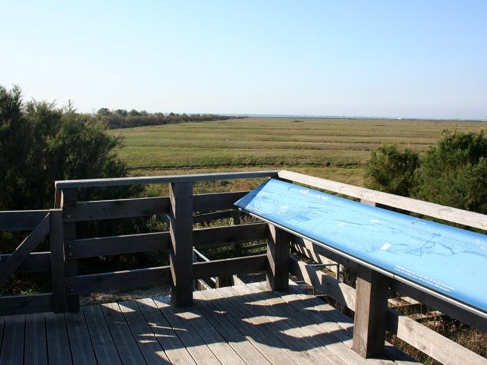 Viewing platform at La Tanne Ronde © Ken Hall (click for larger image)