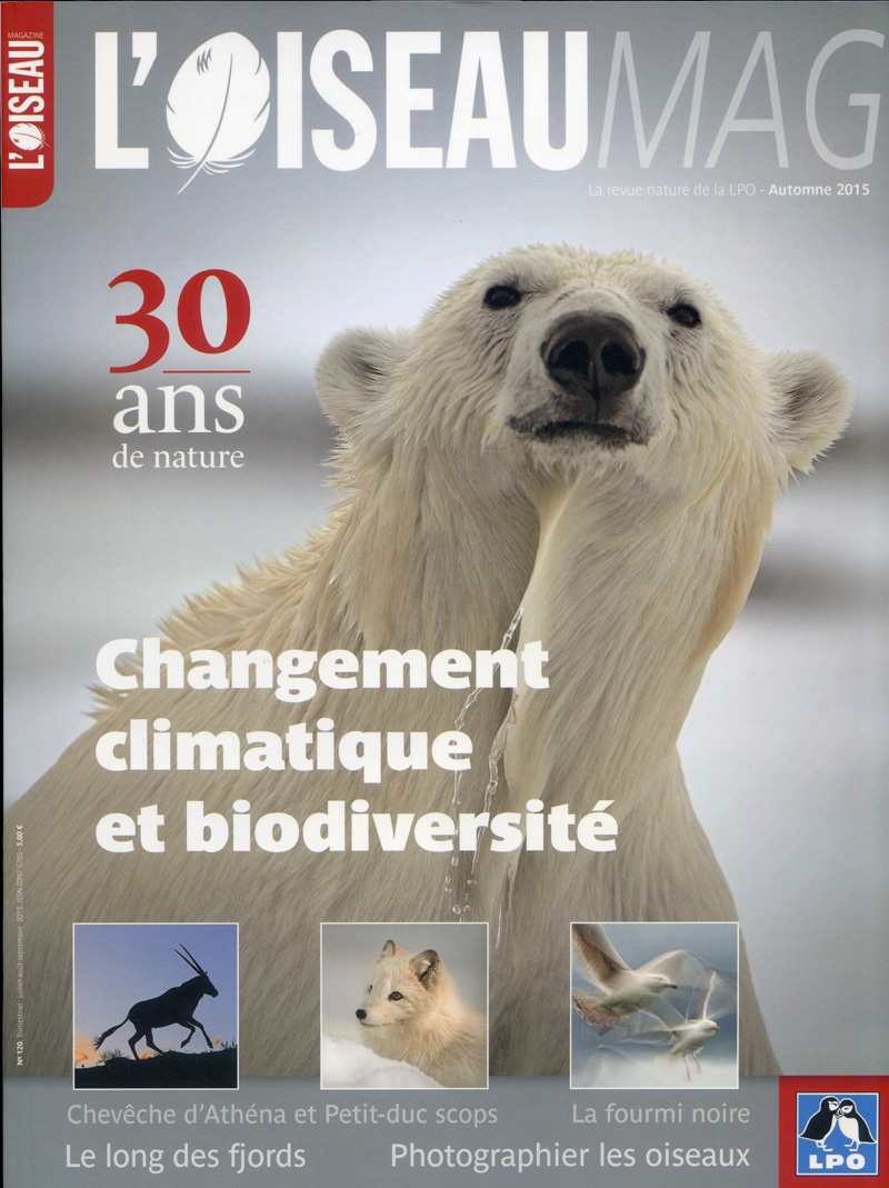 Oiseau Magazine 120 cover © LPO (click for larger image)