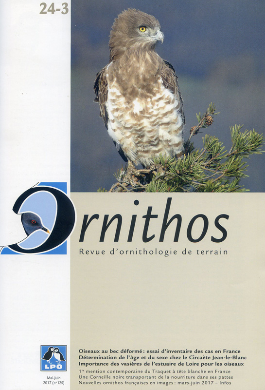 Ornithos cover