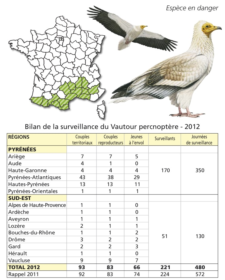 Surveillance results for Egyptian Vulture 2012 © LPO (click for larger image)
