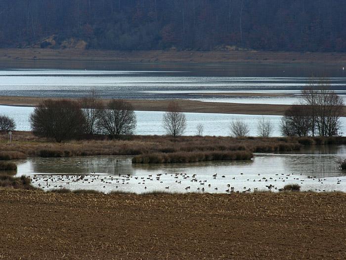 Lac de Puydarrieux © Ken Hall (click for larger image)