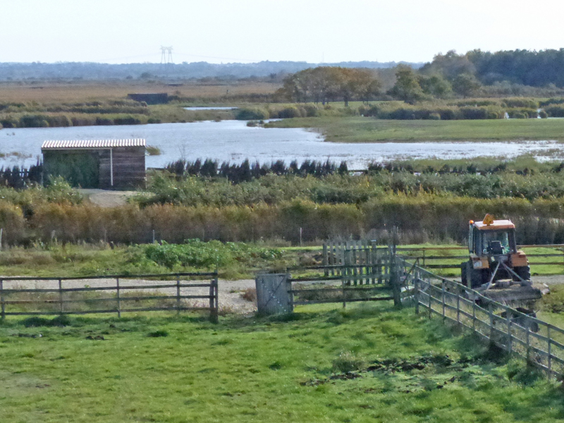 Part of the reserve as seen from tower hide © Ken Hall (click for larger image)