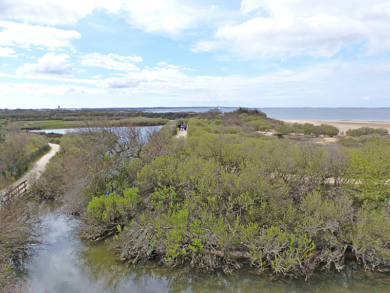 View from tower hide towards the main Bassin. The footpath to the right is outside the reserve and continues round the shore of the Bassin © Ken Hall (click for larger image)